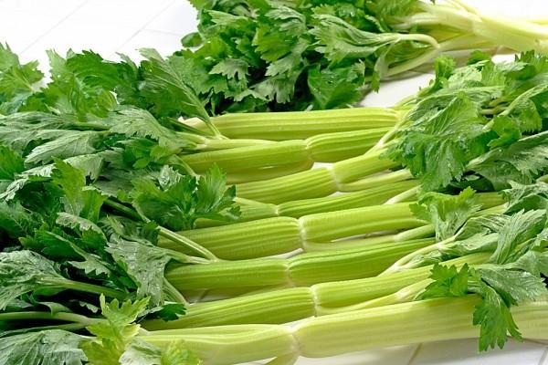 Lợi và hại khi giảm béo bằng rau cần tây